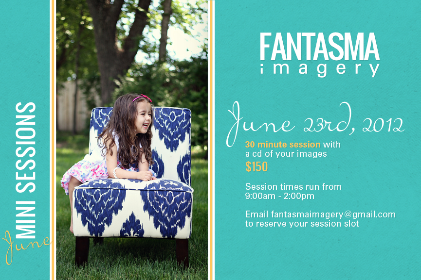 Announcing Summer Mini Sessions!